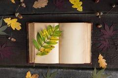 有色的秋叶的葡萄酒开放笔记本在木背景 仍然秋天生活 库存图片
