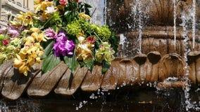 有花卉装饰的在胜利广场,蒂米什瓦拉,罗马尼亚1美丽的老喷泉 影视素材