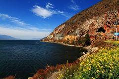 有花和山的湖 库存图片