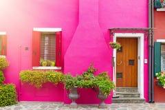 有花和植物的桃红色房子 五颜六色的房子在威尼斯,意大利附近的Burano海岛 免版税库存图片