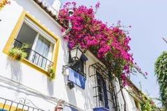 有花和白色房子的传统安达卢西亚的街道 免版税库存照片