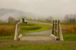 有花和雾的一座幻想桥梁在背景中 库存照片