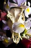 有花和蝴蝶的鹿头骨 免版税库存图片