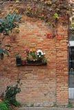 有花圃的砖墙 库存图片