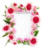 有花桃红色康乃馨的笔记本在白色背景 图库摄影