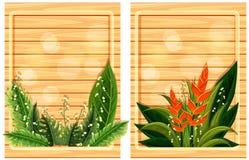 有花框架的两个木板 向量例证
