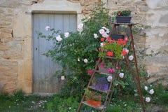 有花梯子的农村议院 免版税库存图片
