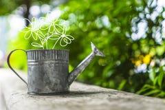 有花的一点喷壶乱画在一绿色bokeh的图画 库存照片