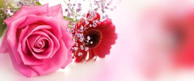有花的全景为母亲节 免版税库存图片