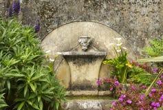 有花的古老老喷泉。 免版税库存照片