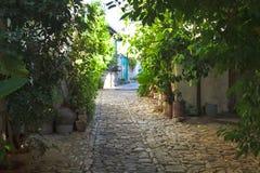 有花的古老街道 免版税库存图片