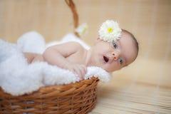 有花的新出生的婴孩在耳朵后 图库摄影