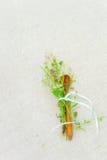 有花的木匙子 库存图片