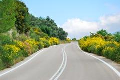 绕有花的柏油碎石地面路 免版税库存图片