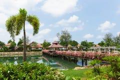 有花的桥梁横跨海湾在一个热带庭院里 免版税图库摄影