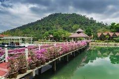 有花的桥梁横跨海湾在一个热带庭院里 免版税库存图片