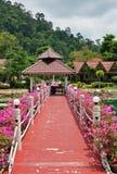 有花的桥梁横跨海湾在热带庭院里 库存照片