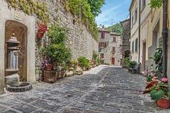 有花的狭窄的老被修补的街道 免版税库存图片