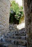 有花的狭窄的街道在老镇 库存图片
