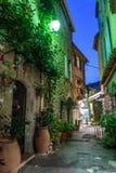 有花的狭窄的街道在老镇Mougins在法国 库存照片