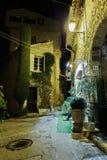 有花的狭窄的街道在老镇Mougins在法国 Ni 免版税库存照片