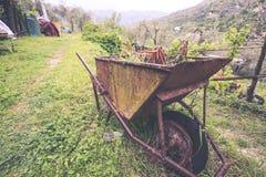有花的生锈的独轮车在庭院里 免版税库存图片