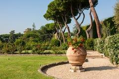 有花的罐在梵蒂冈庭院里 图库摄影
