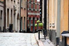有花的罐在老镇的街道上的一把凳子 库存照片