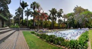 有花的美丽的庭院在特内里费岛 库存图片