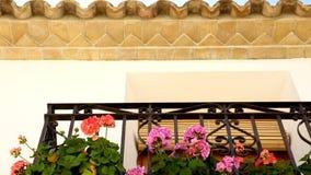 有花的美丽的阳台通过太阳的光芒 股票视频