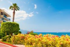 有花的美好的海散步在凯梅尔,土耳其 免版税库存图片