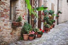 有花的老意大利街道 免版税图库摄影
