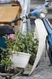 有花的老摩托车 库存图片