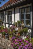 有花的舒适庭院 免版税库存照片