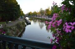 有花的阿姆斯特丹运河 免版税库存照片