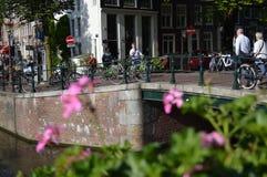 有花的阿姆斯特丹运河 库存照片