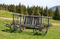 有花的马拖车 库存图片