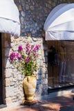 有花的黏土花瓶在一个石墙和商店窗口在欧洲城市的街道上-街道装饰上 库存照片