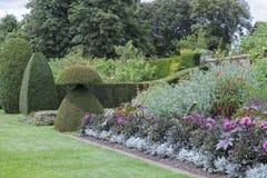 有花的,修剪的花园植物,树,灌木五颜六色的英国庭院 免版税库存照片