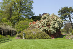 有花的,树,灌木五颜六色的英国庭院 图库摄影