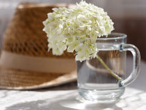 有花的玻璃杯子在柳条帽子背景 库存照片