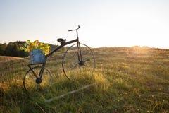 有花盆的古色古香的自行车 免版税库存图片