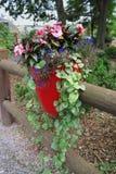 有花盆的篱芭 图库摄影