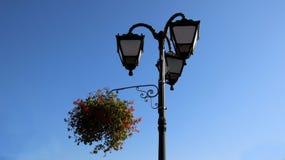 有花盆的街灯 都市的都市风景 免版税库存图片