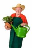 有花盆的高级花匠 免版税库存照片