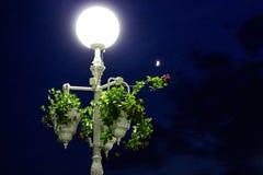 有花经典主题的街灯 免版税库存照片