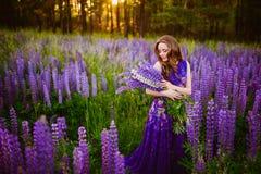 有花羽扇豆的女孩在日落的一个领域 库存照片