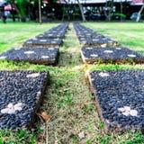 有花装饰的石走道在庭院里 图库摄影