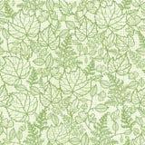 有花边的叶子lineart纹理无缝的样式 免版税图库摄影