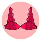 有花边的性感的传染媒介胸罩。 免版税库存图片